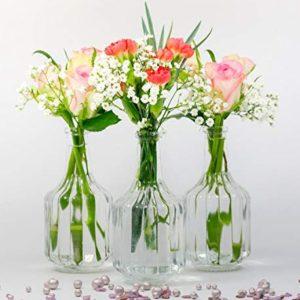 casavetro 6 o 12 x Piccoli vasi Bottiglie di Vetro Halsi Bottiglie di Vetro Landhaus Vintage Vaso Bottiglia Trasparente Mini Bottiglie di Latte Decorative Bianco 12 x