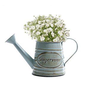 Bloomma annaffiatoi Vintage metallo ferro giardino di fiori Shabby Vaso Vaso piante succulente cubo fioriera decorazione vaso di fiori vaso