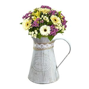 Sue supply shabby chic rustico stile mini metallo brocca vaso brocca vaso can Holder for home Decoration