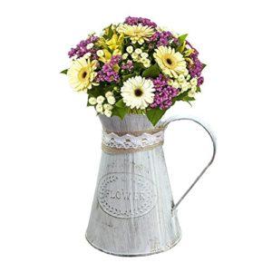 Sue supply shabby chic rustico stile mini metallo brocca vaso brocca vaso can Holder for home Decoration
