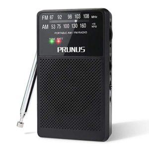 PRUNUS ANJAN A166 Mini DSP transistor Radio FMAMMW tascabile eccellente ricezione Manopola di Sintonizzazione con lIndicatore di segnale Supporta batterie sostituibili AA