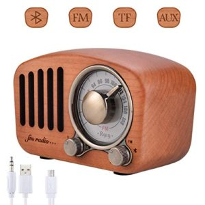 Altoparlanti Bluetooth Radio Portatile Qoosea Stereo Portatile in Legno Retro con Altoparlante Super Bass Subwoofer con Radio FM Jack Audio da 35 mm e Porte per schede TF Lettore MP3
