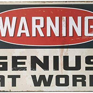 MARQUISE  LOREAN  Targhe Metallo  Insegna Vintage Genius At Work  Targa  Poster Decorazioni Bar  Guarda Qui